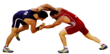 Чемпионат СФО по греко-римской борьбе (29.06-2.07.2018, Красноярск)