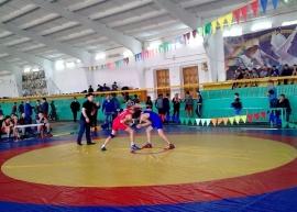 В Одесском прошел 15-й турнир по греко-римской борьбе