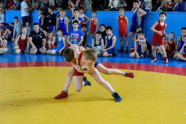 Юные омские борцы привезли награды из Новосибирска