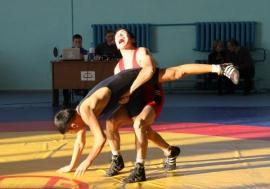В Омске прошел турнир по греко-римской борьбе памяти Фарита Телетаева