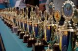 Омские борцы завоевали одиннадцать медалей на первенстве Сибири