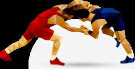 Марк Немиш завоевал путевку на первенство России по греко-римской борьбе