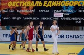 Итоги первенства Омска среди младших юношей в рамках VI «Фестиваля единоборств»