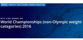 Чемпионат мира в неолимпийских категориях (10-11.12.2016, Будапешт)