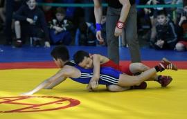 Омские борцы завоевали девять медалей на тюменском турнире