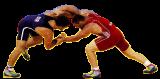 Первенство СФО по греко-римской борьбе среди юношей до 16 лет (23-25.03.2018, Бердск)