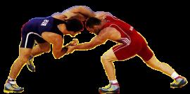 Открытое первенство Омска по греко-римской борьбе, 2006-2007 г.р. (8.01.2018, Омск)